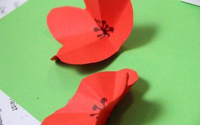 Healey Botanical Art Workshop